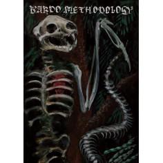 Bardo Methodology IV