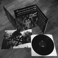 DARK FURY - Saligia - 12LP...