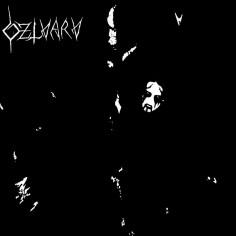 DZLVARV - S/T - CD