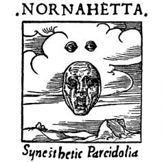 NORNAHETTA (Isl) -...