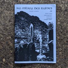 Au Milieu des Ruines Zine, IV